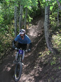 Mountain bike 16. Racing mountain bike zooming past 16 Stock Photography