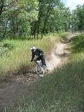 Mountain bike 19. Racing mountain bike zooming past 19 Royalty Free Stock Image