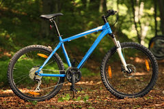 Mountain bike. Side view in the forest Stock Images