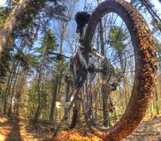 Mountain Bike Royalty Free Stock Images