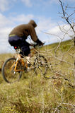 Mountain bike Royalty Free Stock Photos