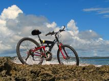 Mountain-bike. In front of tropical ocean stock photography