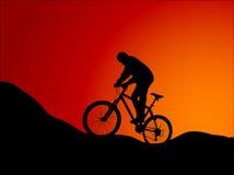 Mountain bike. Vector illustration of mountain bike Royalty Free Stock Photos