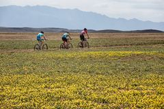 Mountain bike andventure competition Royalty Free Stock Images