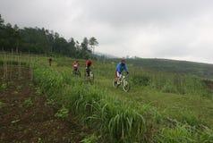Mountain bike Stock Photos
