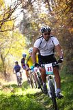 Mountain bike competition in autumn forest Stock Image
