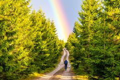 Free Mountain Bike Cycling After Rain. Woman Rides Towards Bright Rainbow Through Forest Country Road. Outdoor Sport Theme Stock Images - 192674694
