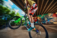 Mountain bike cyclist doing wheelie stunt on a mob bike on a pump track Royalty Free Stock Photos