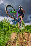 Mountain bike cyclist doing wheelie stunt Royalty Free Stock Images
