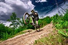 Mountain bike cyclist doing wheelie stunt on a mtb bike Royalty Free Stock Images