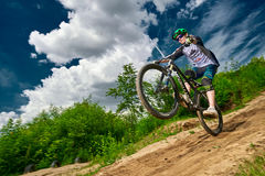 Mountain bike cyclist doing wheelie stunt on a mtb bike Royalty Free Stock Image