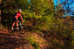 Mountain Bike cyclist riding outdoor Stock Images