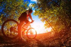 Mountain Bike cyclist riding outdoor. Mountain Bike cyclist riding single track outdoor royalty free stock photos