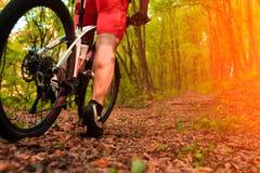 Mountain Bike cyclist riding outdoor. Mountain Bike cyclist riding single track outdoor royalty free stock photo