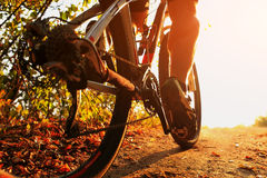 Mountain Bike cyclist riding single track outdoor Royalty Free Stock Photography
