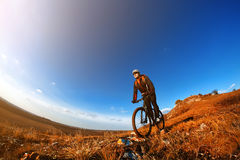 Mountain Bike cyclist riding single track outdoor with blue sky on background. Wide angle. Fisheye. Landscape with hill, blue sky and clouds. Trail. Cyclist Stock Photography