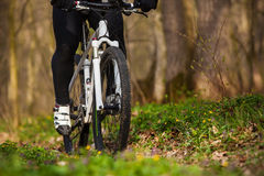 Mountain Bike cyclist riding single track. Sport. Mountain Bike cyclist riding single track in beautifull spring forest Stock Photo