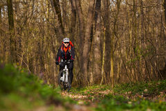 Mountain Bike cyclist riding single track. Sport. Mountain Bike cyclist riding single track in beautifull spring forest Royalty Free Stock Photos