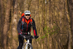 Mountain Bike cyclist riding single track. Sport. Mountain Bike cyclist riding single track in beautifull spring forest Royalty Free Stock Photography