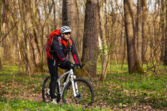 Mountain Bike cyclist riding single track. Sport. Mountain Bike cyclist riding single track in beautifull spring forest Stock Image