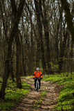 Mountain Bike cyclist riding single track. Sport. Mountain Bike cyclist riding single track in beautifull spring forest Royalty Free Stock Photo