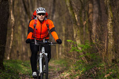 Mountain Bike cyclist riding single track. Sport. Mountain Bike cyclist in orange jersey riding single track in beautifull spring forest Stock Images