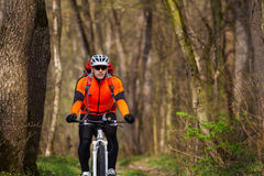 Mountain Bike cyclist riding single track. Sport. Mountain Bike cyclist in orange jersey riding single track in beautifull spring forest Royalty Free Stock Photo