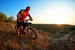 Mountain Bike cyclist riding single track at sunrise Royalty Free Stock Image