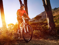 Mountain bike athlete Royalty Free Stock Image