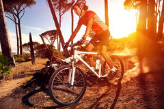 Mountain bike athlete Stock Photos