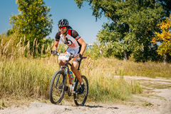 Mountain Bike cyclist riding track at sunny day Royalty Free Stock Images