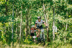 Mountain Bike cyclist riding track at sunny day Royalty Free Stock Image