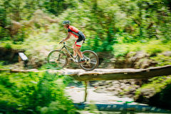 Mountain Bike cyclist riding track at sunny day Stock Image