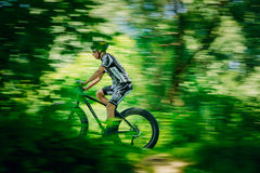 Mountain Bike cyclist riding track at sunny day Stock Photography