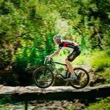 Mountain Bike cyclist riding track at sunny day. GOMEL, BELARUS - JUNE 7, 2015: Mountain Bike cyclist riding track at sunny day, healthy lifestyle active athlete Royalty Free Stock Photo