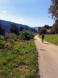 Mountain bike cyclist. On the road go from village, alps, styria, austria Stock Photo