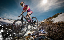 Mountain Bike cyclist. Sport. Snow Mountain Bike cyclist riding single track Stock Images