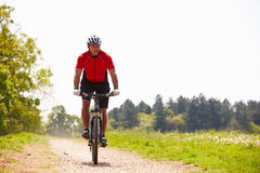 Mountain bike da equitação do homem ao longo do trajeto no campo Foto de Stock