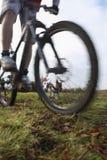 Mountain bike da equitação do homem com cão Fotos de Stock Royalty Free