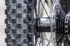 Mountain bike do pneu Fotos de Stock Royalty Free