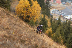 Mountain Bike Downhill Royalty Free Stock Images