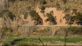 Mountain Bike Enthusiasts stock video footage