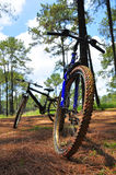 Mountain bike in forest Royalty Free Stock Photo