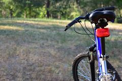 Mountain bike in the forest Stock Image