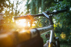 Mountain bike in the forest on sunset Stock Photos