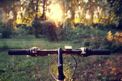 Mountain bike in forest on sunset Stock Image