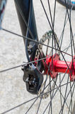 Mountain bike front wheel with hydraulic disc brake Royalty Free Stock Image