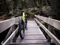 Mountain bike giallo in ponte di legno fotografie stock libere da diritti