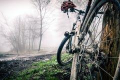 Mountain bike and helmet in autumn woods Stock Photo