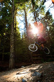 Mountain bike jump. Motion blurred montain biker is jumping during a downhill ride Royalty Free Stock Images